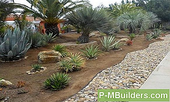 Simple Driveway Landscaping Ideas