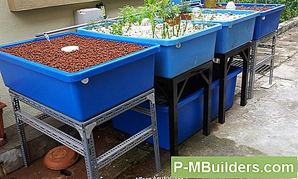 Aquaponics System Kit Vs Homemade