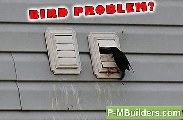 Bird Proof Dryer Vents