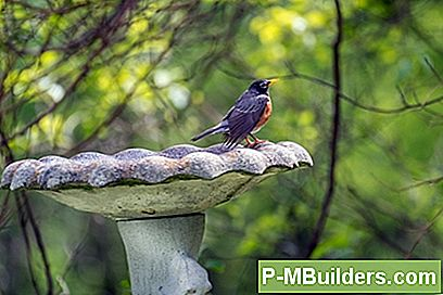Wie Man Ein Cracked Concrete Bird Bath Repariert