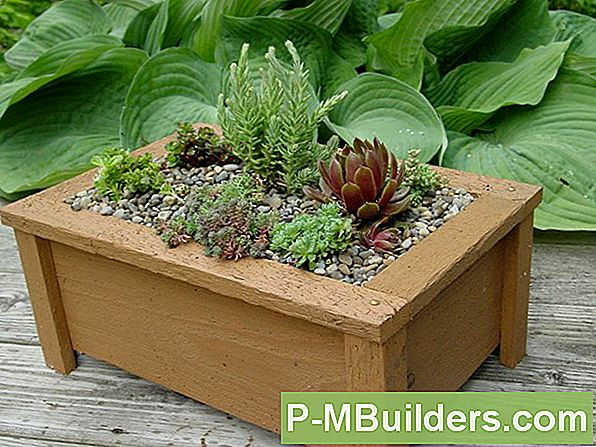 6 Tk Planter Box Design Ideed