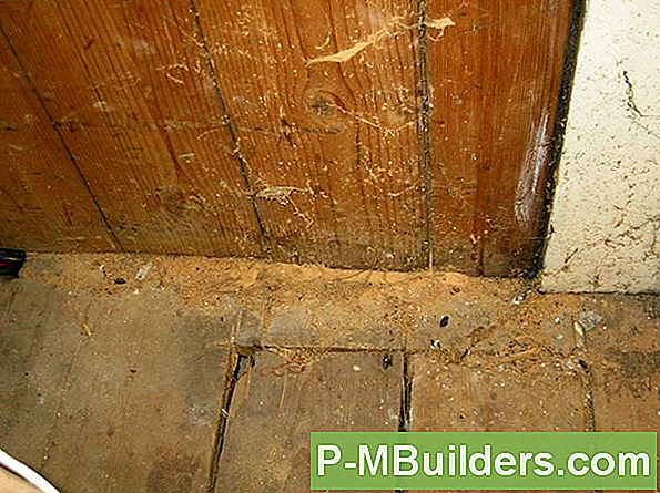 Diy Woodworm Treatment Tips