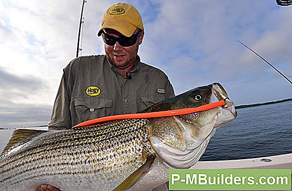Kuidas Rig Striper Fishing Lures