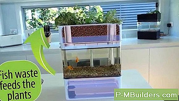 Aquaponics System Kit Vs Hausgemachtes
