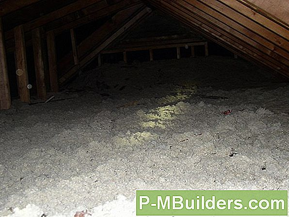Hot Topics: Can Attic Insulation Deter Rats?